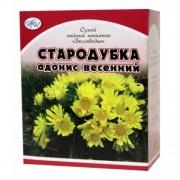 Горицвет (Адонис весенний)